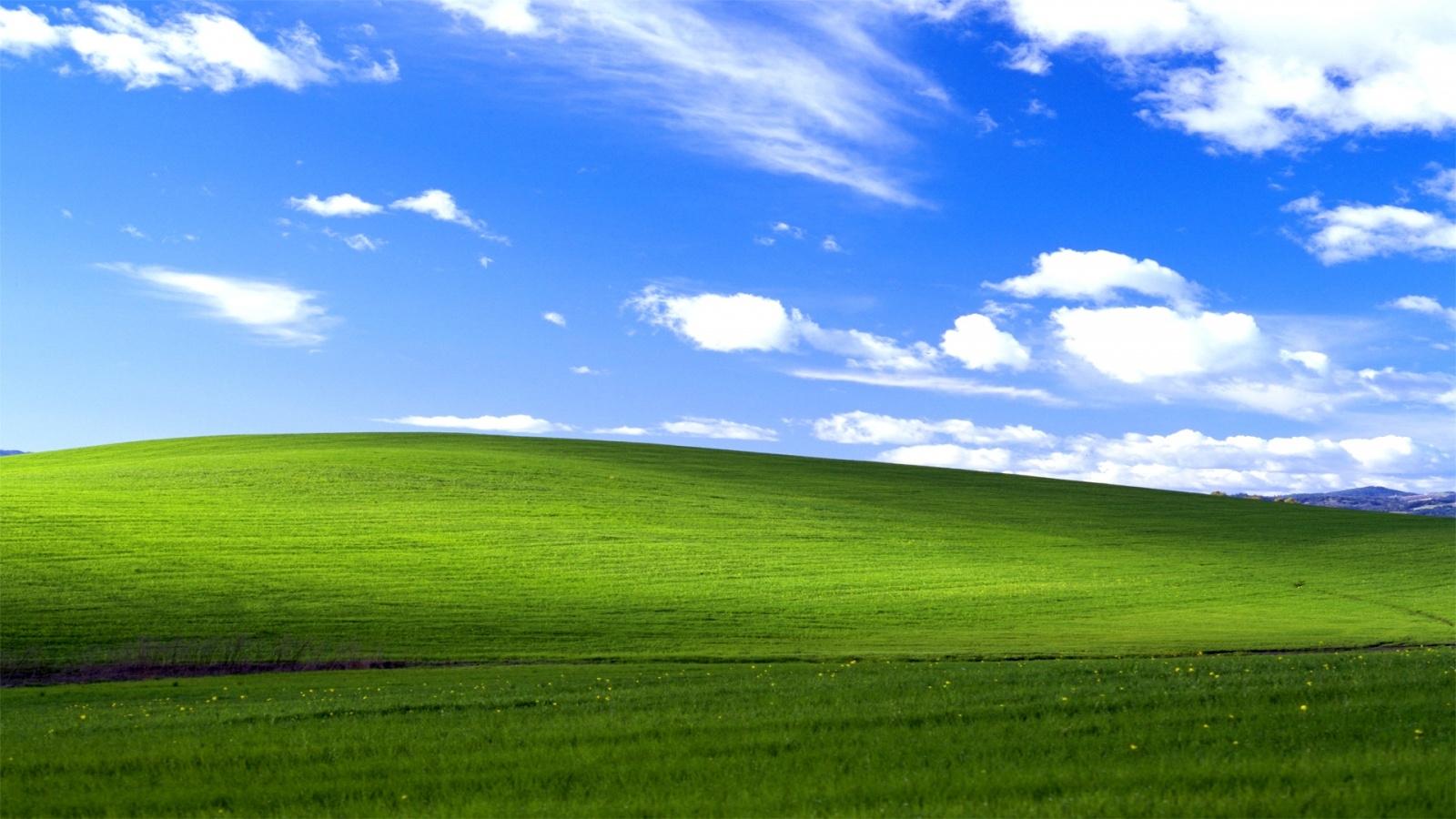 Tác giả ảnh nền Windows XP đã có thể thành triệu phú nhờ phí bản quyền