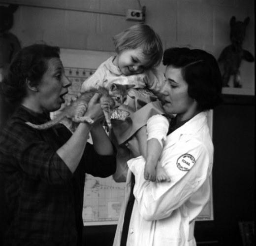 Ấm áp chùm ảnh động vật mang niềm vui cho trẻ nhỏ tại bệnh viện