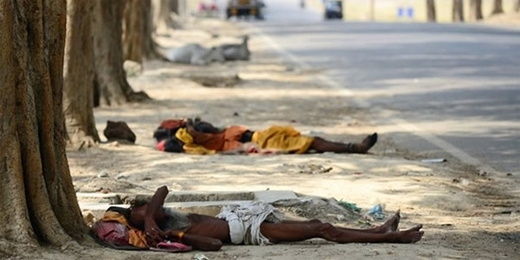 Chùm ảnh về nắng nóng kinh hoàng khiến hơn cả nghìn người chết