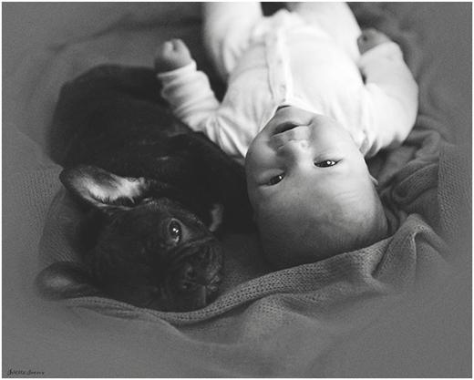 """Ivens miêu tả tình bạn giữa con trai và chú chó của gia đình: """"Một sự gắn kết thuần khiết, vô điều kiện và bất di bất dịch""""."""