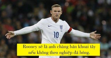 Nếu không là cầu thủ chuyên nghiệp, các tuyển thủ Anh sẽ làm gì?