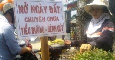"""""""Thần dược"""" cây nở ngày đất đầy đường Sài Gòn"""