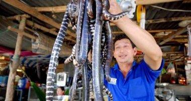 Cận cảnh quy trình sản xuất khô rắn - đặc sản miền Tây