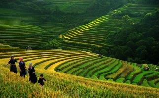 Việt Nam bất ngờ lọt top 20 điểm đến đáng sống nhất thế giới