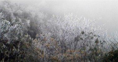 Rét âm 1 độ C, băng giá phủ trắng Fansipan