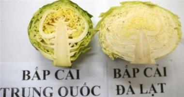Tuyệt chiêu phân biệt rau củ quả Trung Quốc