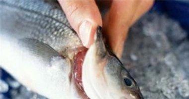 Độ nguy hại của hải sản tẩm urê và cách nhận biết