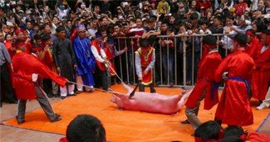 """Tổ chức Động vật châu Á: """"Chúng tôi thất vọng vì lễ chém lợn"""""""