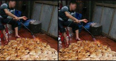 """Thực hư về bức ảnh """"gà rán bẩn"""" khiến dân tình hoang mang"""