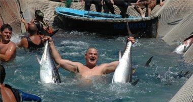 """Choáng với những hình ảnh săn cá """"dã man"""" gây tranh cãi"""