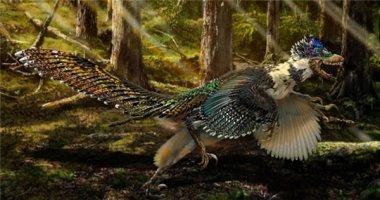 """Kinh ngạc trước """"khủng long phượng hoàng"""" mới được phát hiện"""