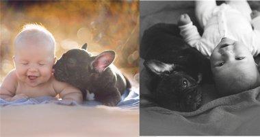 Ngất ngây với bộ ảnh về tình bạn giữa con người và thú cưng