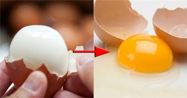 Nghiên cứu đột phá: có thể biến trứng đã chín thành trứng sống
