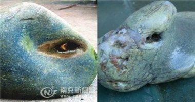 Kì lạ hòn đá có mắt, biết khóc như người