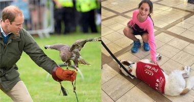 Ngạc nhiên với những nhân viên sân bay là... động vật