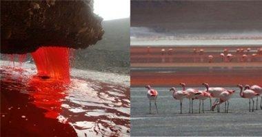 Hoảng hồn với những dòng sông đỏ như máu kì lạ nhất thế giới
