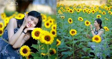 Vườn hướng dương Đồng Nai - điểm 'pose hình' mới siêu hot