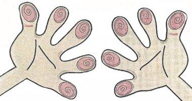 Số hoa tay quyết định tính cách của bạn