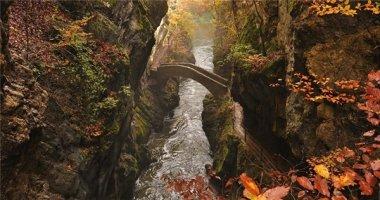 """Những cây cầu """"vi diệu"""" khiến bạn thấy như lạc vào xứ thần tiên"""