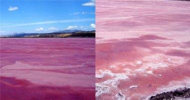 Hé lộ bí mật không ngờ tại hồ nước màu hồng kì lạ nhất thế giới
