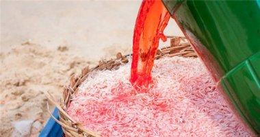 Ruốc đỏ quạch nhờ tắm no trong hóa chất