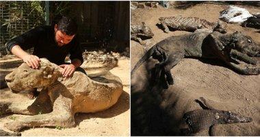 Kinh hoàng cảnh tượng xác động vật khô héo trong sở thú