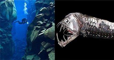 """""""Khui"""" được bí ẩn động trời dưới vùng biển sâu nhất thế giới"""