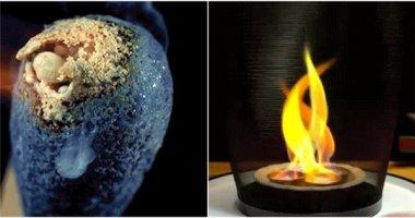 """Những hình ảnh cho thấy hóa học thực sự """"vi diệu muốn xỉu"""""""