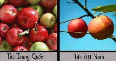 Nhận dạng rau, củ, quả Trung Quốc qua ảnh