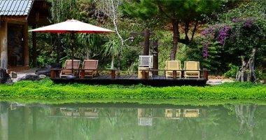 """Top cà phê """"view rừng"""" đẹp chao đảo ở Đà Lạt"""