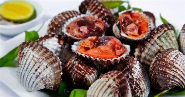 """Sò huyết Thủy Triều - món """"hải sản vua"""" tại Nha Trang"""