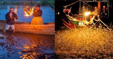 Cận cảnh vẻ đẹp của đánh cá đêm bằng đuốc và chim cốc