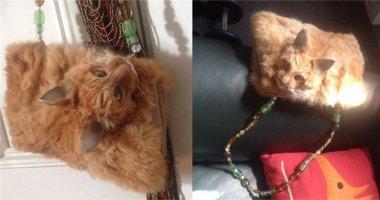 Tranh cãi kịch liệt vì túi xách lông mèo nguyên đầu giá hơn 32 triệu