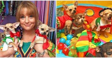 Không tin nổi tiệc sinh nhật các em cún này lên đến... 120 triệu đồng