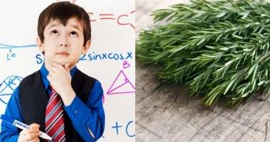 Phát hiện loại rau giúp tăng trí nhớ gấp đôi