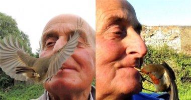 """""""Sửng sốt"""" trước cảnh người đàn ông cho chim ăn bằng miệng"""