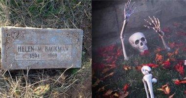 10 thứ đáng sợ nhất ở sân vườn mà bạn thường tìm thấy