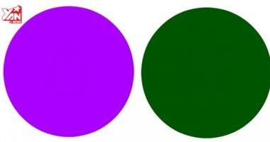 """Nhìn thấy """"cái gì đó"""" trong những vòng tròn này thì mắt bạn đạt 10/10"""