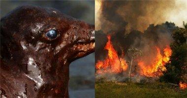 Nổi da gà trước những hình ảnh cho thấy mẹ thiên nhiên đang nổi giận
