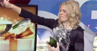 Tổng hợp 13 màn mở rượu thất bại nhất mọi thời đại