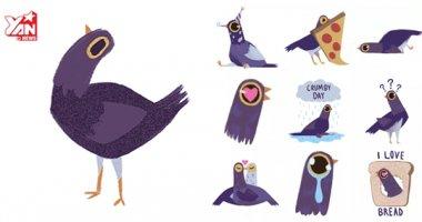 """""""Chú chim quẫy"""" này hiện đang gây sốt rần rần trên mạng"""
