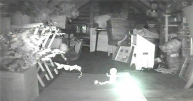 Đặt camera theo dõi trộm và kết quả thu được khiến chủ nhà rùng mình