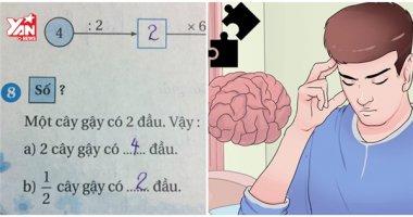 """""""Nhức óc"""" với bài toán đố dành cho học sinh lớp 2"""