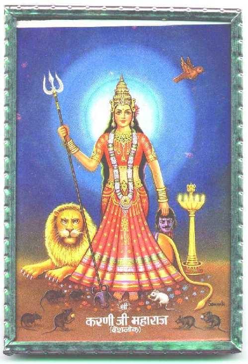 Hình ảnh của nữ thần chuột Karni Mata. (Ảnh:Internet)