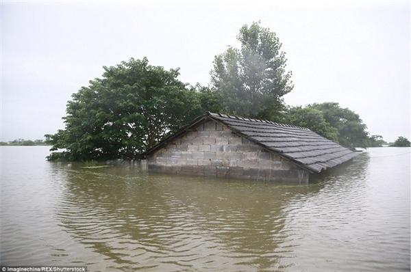 Tình Trạng Mưa Lớn Kéo Dài Gây Ngập Lụt Nghiêm Trọng, Thiệt Hại Lớn Về