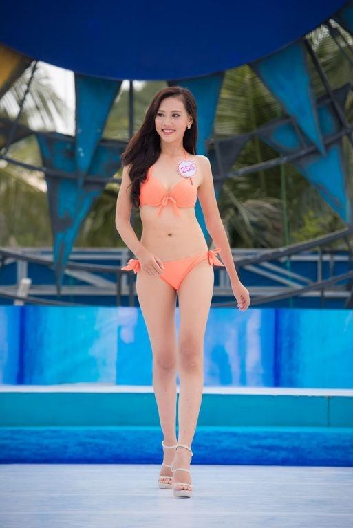 Trần Thị Thùy Trang