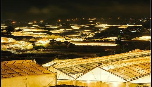 7 địa điểm có một không hai ở Đà Lạt - xứ sở sương mù