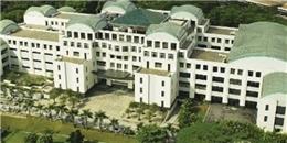 Hấp dẫn học bổng 100% từ Học viện SIM (Singapore)