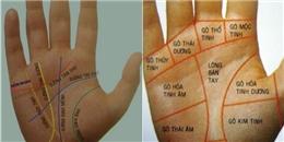 Đường nét trên lòng bàn tay nói lên điều gì về con người bạn?