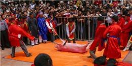 Tổ chức Động vật châu Á: 'Chúng tôi thất vọng vì lễ chém lợn'